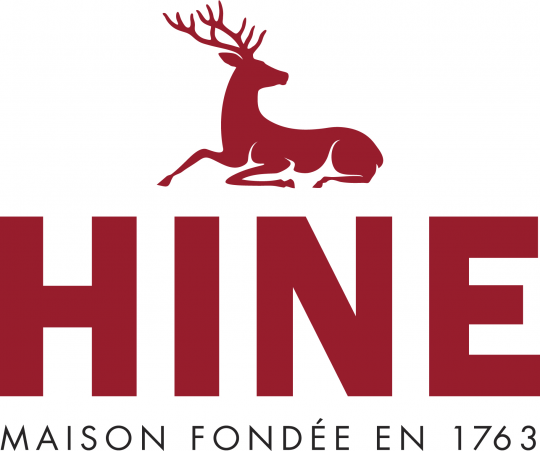 LOGO HINE 2016 CMNJ